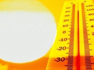Trabalhador rural tem direito a intervalos para se recuperar de exposição ao calor